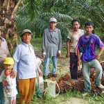 Sustainable Palm Oil Study Tour